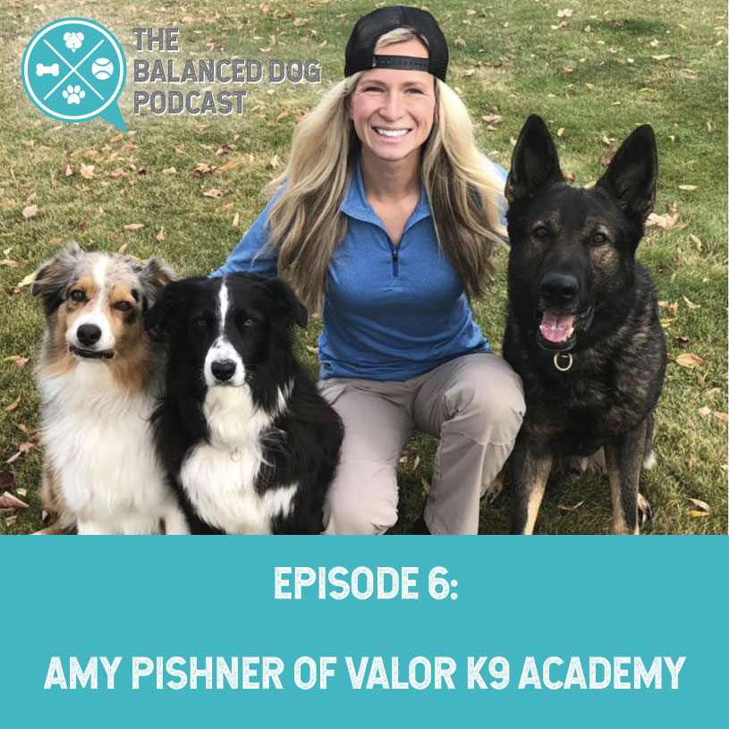 The Balanced Dog Podcast™